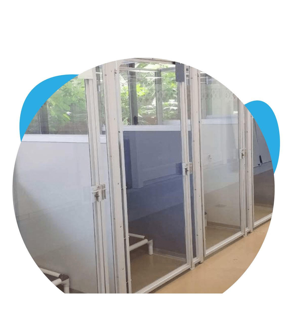 Spacious dog boarding kennels in Rockville md